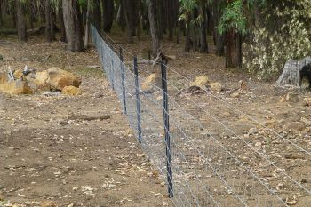 Galvanised_mesh_rural_fencing